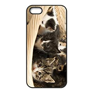 Cat Babies Hight Quality Plastic Case for Iphone 5s