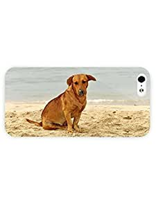 3d Full Wrap Case for iPhone 5/5s Animal Dog On The Beach49 wangjiang maoyi