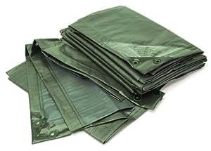 Bio Green Lona RX90-3X4-G Rainexo, 3 x 4 m, 90 g/m², incluye ojales
