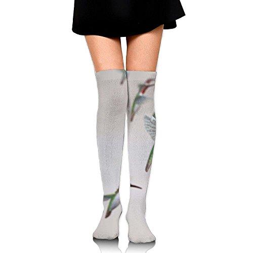 Humming Birds Fly.jpeg Leisure Crew Top Socks,Tube Thigh-High Nursing Compression Long Socks,3D Printed Sports For Girls&Women