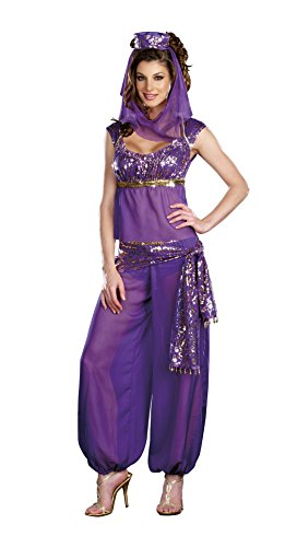 Harem Dancer Adult Women Costumes (Dreamgirl Women's Ally Kazam Costume, Purple, Small)