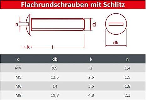 FASTON/® Flachkopfschrauben mit Schlitz M4x20 Bordwandschrauben aus rostfreiem Edelstahl A2 V2A Becherschrauben Tellerschrauben 2 St/ück