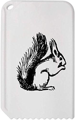 Azeeda 'Eichhörnchen' Kunststoff-Eiskratzer (IC00006733)
