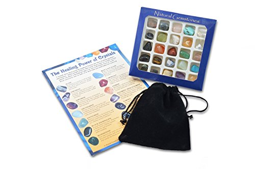 Fossil Gift Shop Gemstone Selection with Pouch & Info Card