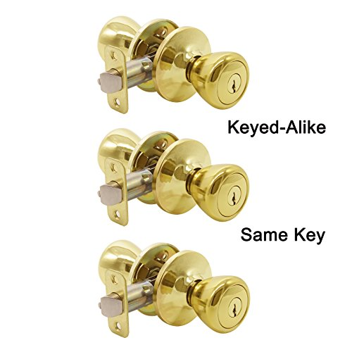 Gobrico Tulip-style Keyed-alike Exterior Door Hardware Entrance Locksets Knob, Polished Brass Same Keys 3Pack