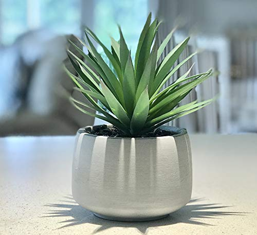 "Kurrajong Farmhouse Gorgeous 7""x 4.5"" Green Artificial Plant in Pot, Potted Succulent, feaux Plant in Pot, Faux Plant in Pot, Fake Plant in Pot, Decorative Plant Pot, Potted Faux Plant for Classroom"