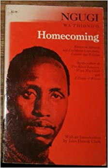 essays homecoming the reader Essays about homecoming this poem is a puzzle for the reader - there are some things the poet has not told us, and without them.