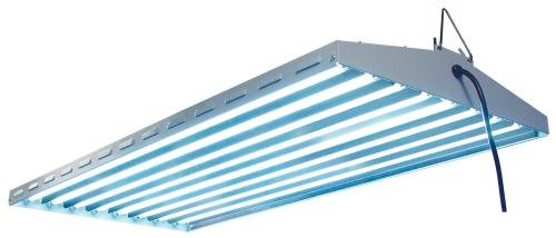 Sun System Fluorescent 960205 120/240V New Wave Lamp, 4' by Sun System Fluorescent