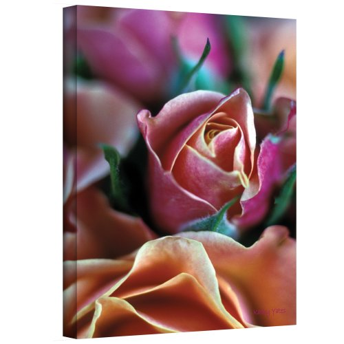 Art Wall Mauve and Peach Roses Gallery Wrapped Canvas by Kathy Yates,