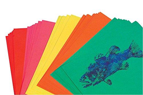 PAC101049 - Pacon Array Colored Bond Paper