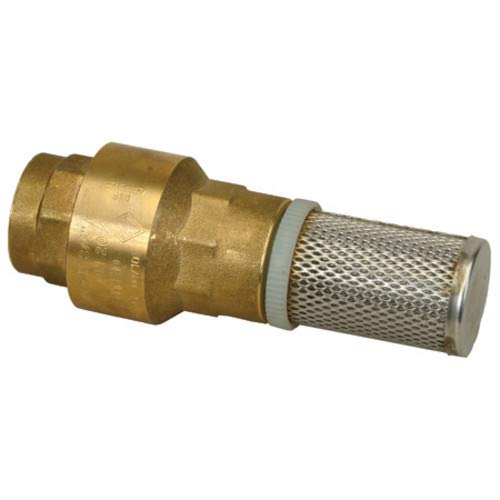 PROFLO PFXBFVG 1 Inch Foot Valve with Stainless Steel Strainer
