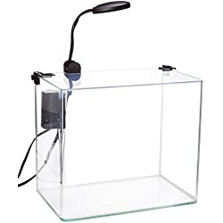 Penn Plax Curved Corner Glass Aquarium Kit, Filter, LED Light, Float Glass For Maximum Viewing 3.4 Gallon