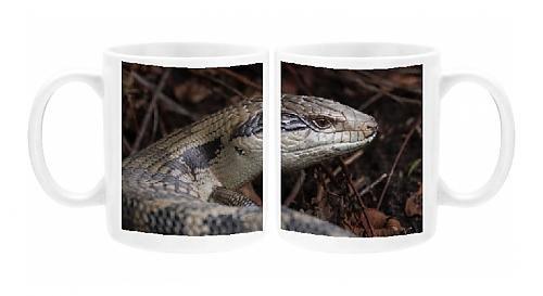 photo-mug-of-handsome-blue-tongue-lizard