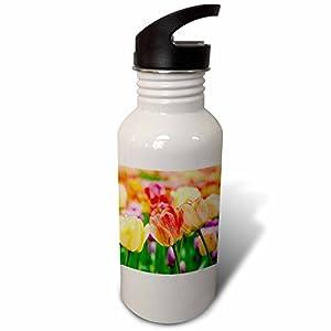 3dRose Alexis Photography - Flowers Tulip - Soft yellow, orange, beige tulips on a festive flowerbed - Flip Straw 21oz Water Bottle (wb_273834_2)