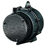 PART NO. LGP526003 Little Giant 526003, NK-1 Small Submersible Pump, 1/150 hp, 210 GPH, 115 V