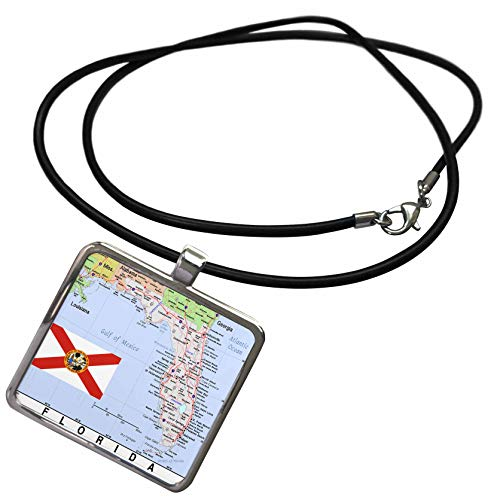 (3dRose Topo Maps and Flags Of States - Image of Florida Topographic State Map n Flag - Necklace With Rectangle Pendant)