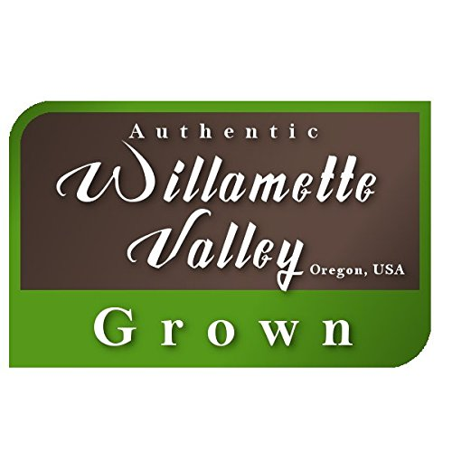 Hairy Vetch Legume Seed by Eretz - Willamette Valley, Oregon Grown (5lbs) by Eretz (Image #6)