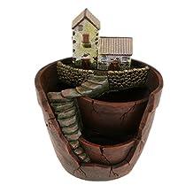 Room Table Planter Sky Garden Flower Cacti Sedum Succulent Pot Trough Box Case Bed