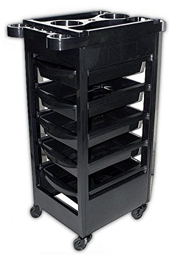 Spa Trolley Storage Cart Coloring Beauty Rollabout Hair Blow Dryer Holder (Spa Vo5)