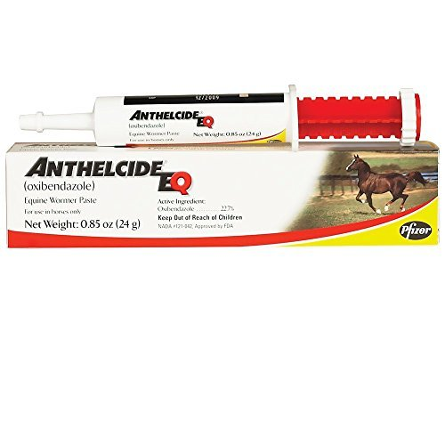 Anthelcide Eq Equine Wormer Paste by Pfizer