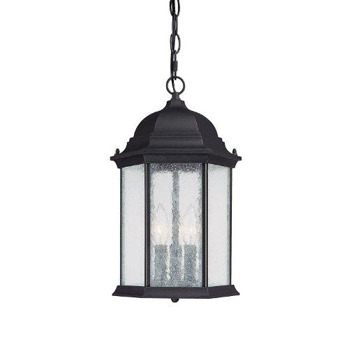 9836bk hanging lantern