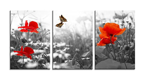 Youk-art Decor 3 Panels Black And White Red Flower Butterfly Photograph Printed on Canvas for Home Wall Decoration For Kitchen Guestroom (Butterfly Panel)