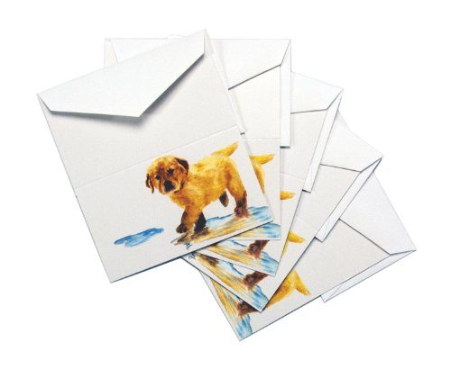 Rainbow Card Company 5-Pack Enclosure Card - Puddles