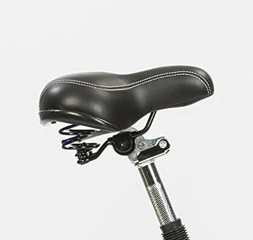 Urban e-motion Bicicleta eléctrica e-Bike Comfort Negra 10000Ah: Amazon.es: Deportes y aire libre