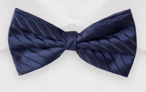 Noeud papillon de Fabio Farini en bleu