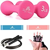 Pair of Neoprene Dumbbells 3 lbs 2 Resistance Exercise Bands 1 Adjustable Jump Rope and Free Slip-Proof Gloves -Body Workout Equipment Set for Home, Gym & Outdoor Sports(Skytree) …