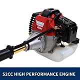 FENGKE 2017 New 52cc Long Reach Pole Chainsaw Brush Cutter Whipper Snipper Pruner Line Tree with 2 Extend Pole Garden Tools