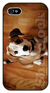iPhone 5 / 5s Watching up - black plastic case / dog, animals, dogs