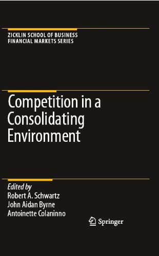 Competition in a Consolidating Environment (Zicklin School of Business Financial Markets Series) (Antoinette Stock)