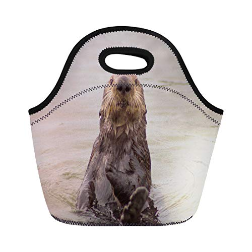 Semtomn Lunch Bags Coast Animal California Sea Otter Boats Color Cute Eating Neoprene Lunch Bag Lunchbox Tote Bag Portable Picnic Bag Cooler Bag
