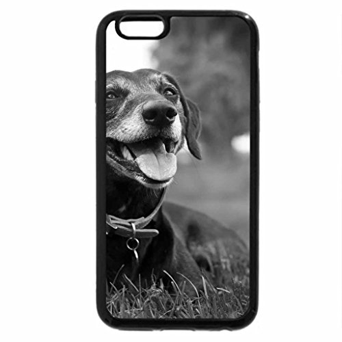 iPhone 6S Case, iPhone 6 Case (Black & White) - Dog!