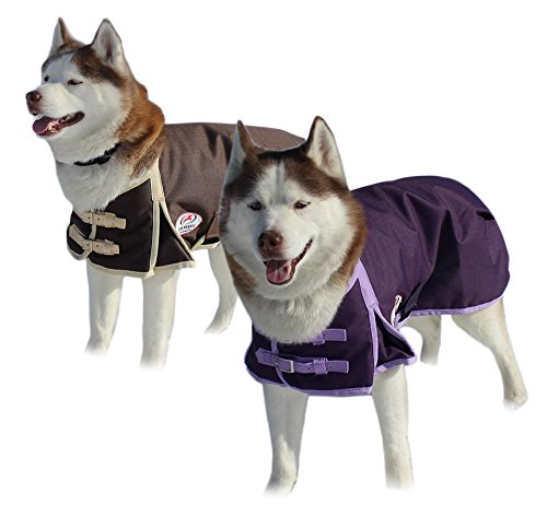 Derby Originals 1200D Heavy Duty Waterproof Dog Coat with 2 year limited warranty