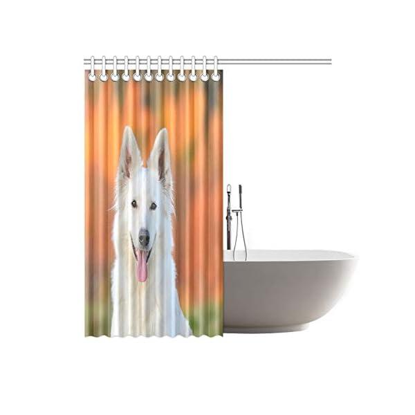 WBSNDB Home Decor Bath Curtain White Swiss Shepherd Dog Autumn Polyester Fabric Waterproof Shower Curtain for Bathroom, 72 X 72 Inch Shower Curtains Hooks Included 2