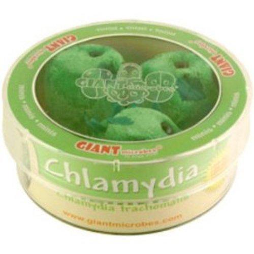 Giant Microbes Giant Microbes Chlamydia (Chlamydia Trachomatis) Petri Dish