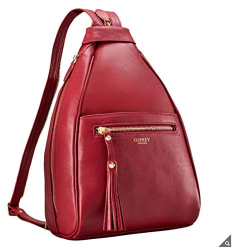 huge inventory low cost offer discounts Osprey London Hampstead Leather Rucksack in Red: Amazon.co ...