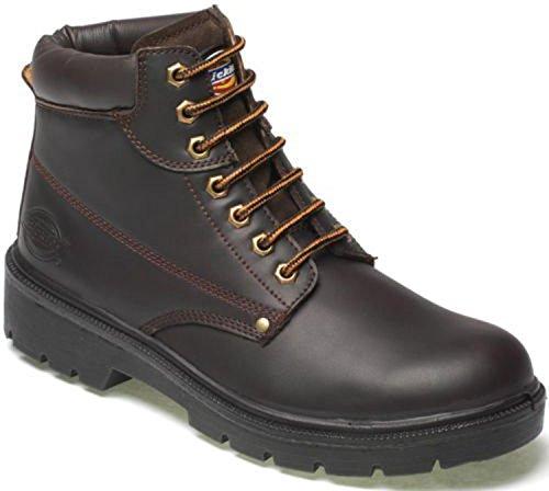 Dickies Mens Antrim Safety Boot Shoes Steel Toe Cap & Steel Midsole Work Branded Lightweight Footwear Oil & Slip Resistant FA23333 Brown SIZE UK 10 YTUG0M92