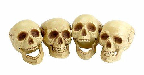 Shalleen (4) Life-Size Plastic Human Skull Decoration Prop Skeleton Head Halloween Decor (Beetlejuice Little Head)