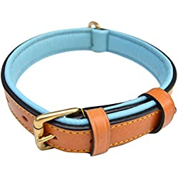"Luxury Real Leather Padded Dog Collar, Small Tan and Teal , 16"" Long x 5/8"" Wide, Fits Neck Size 11"" to 13.5"" , By Soft Touch Collars"