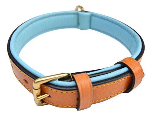 Luxury Leather Soft Touch Collars