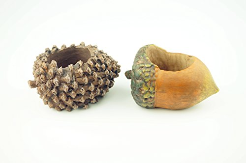 BlingInc Mini Resin Succulent Plant Pot Adorable Planter Desktop Flowerpot Fairy Garden Indoor Outdoor Home Decoration Set of 2 Acorn and Pine - Pinecone Desk
