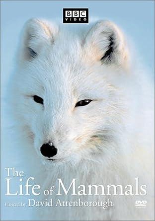 Amazon.com: The Life of Mammals, Vol. 2: David Attenborough ...
