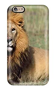 Forever Collectibles Free Lion Hard Snap-on iphone 5 5s Case