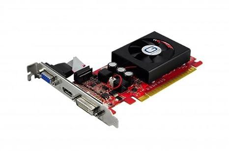 Gainward 4260183362142 GeForce GT 520 1 GB GDDR3 - Tarjeta gráfica (GeForce GT 520, 1 GB, GDDR3, 64 bit, 2560 x 1600 Pixeles, PCI Express 2.0)