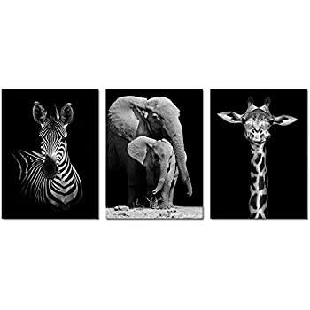 Visual art decor modern black and white canvas wall artanimals picture printselephant