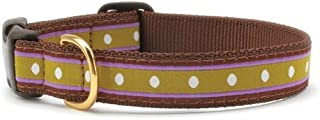 product image for Up Country Dotty Stripe Dog Collar