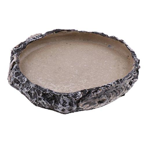 Blesiya Reptile Home Decoration Resin Feeding Bowl Tortoise Gecko Food Water Dish, Dia. 15cm/5.91inch by Blesiya (Image #2)